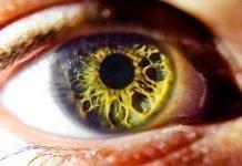 Oftalmopatías y retinopatías